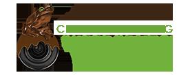 cfrog-logo